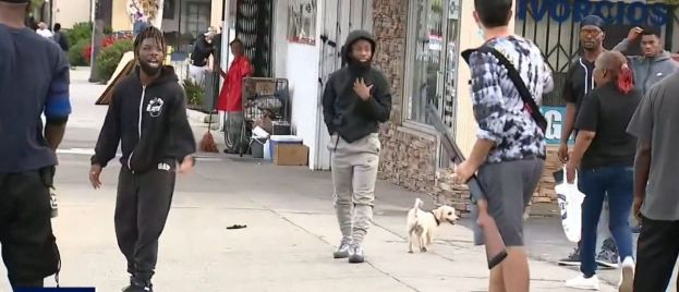 VIDEO: Shotgun Toting Shop Owners Fend Off Looters In LA, Cops Start Arresting Shop Owners, Eventually Catch Looters