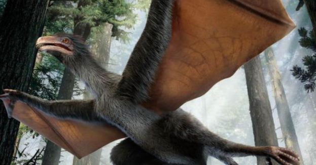 Palaeontologists Discover Fossils Of A Flying Dinosaur