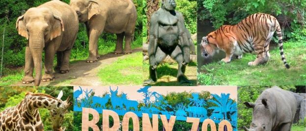 Sins Of The Fathers: Bronx Zoo Bows To Pressure, Apologizes For 120 Year Old Exhibit