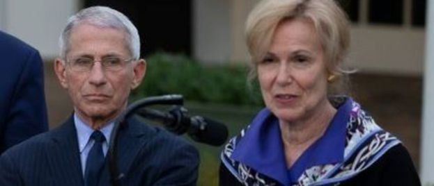 Dr. Fauci and Dr. Birx Used Imperial College Model, NOW CONFIRMED FRAUDULENT — To Persuade Lockdown