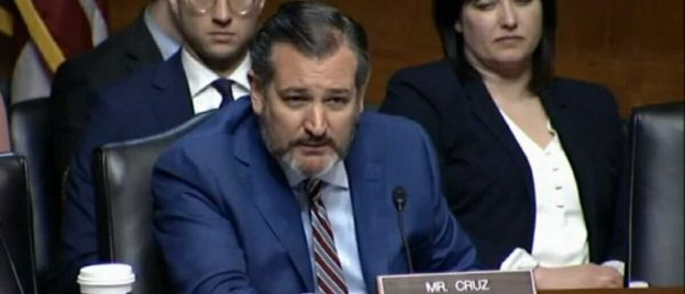 Ted Cruz Drops History Lesson on Ilhan Omar After She Picks Fight Over Columbus Statue