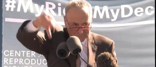 """Schumer Threatens Supreme Court Justices Gorsuch and Kavanaugh, """"You Will Pay the Price! You Won't Know What Hit You!"""" (Video)"""""""